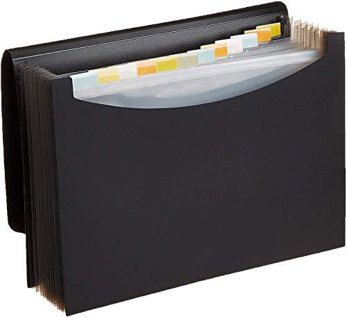 Amazon Basics Expanding Organizer File Folder, Letter Size - Black
