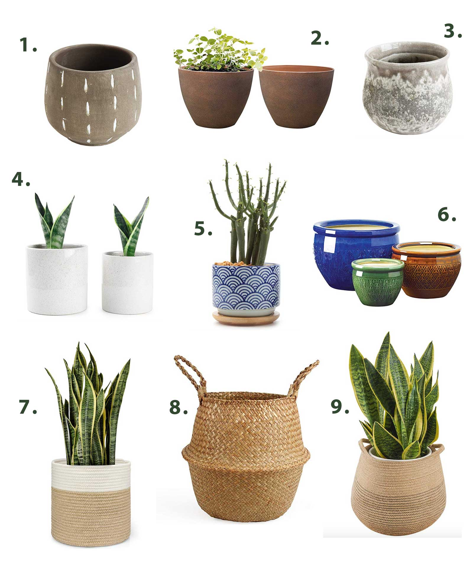 Plastic-Free plant pot options