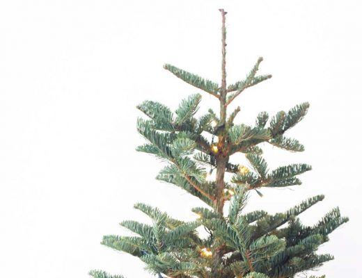 Minimalist Christmas Tree with Natural Christmas Ornaments