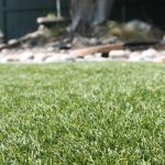 Simple methods for cleaning artificial grass